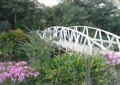 Paeroa old railway foot bridge